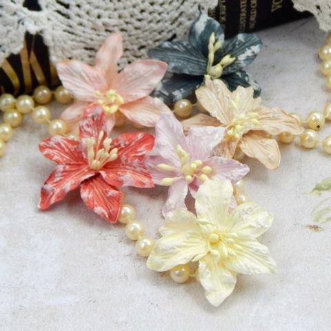 Harvest Lilies