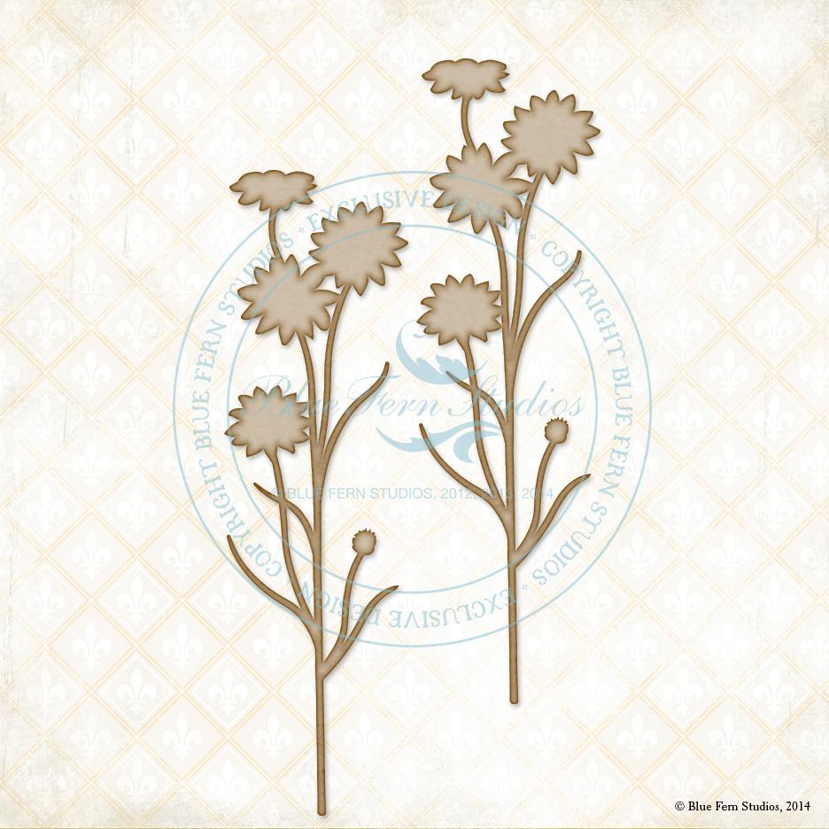 Garden Daisies - Large